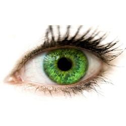 oeil-contact-logo